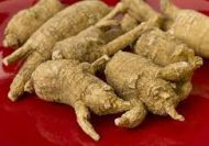 American Ginseng -whole  Premium Root 1/4 lb