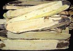 Astragalus (Huang Qi ) High Grade 1/4 lb